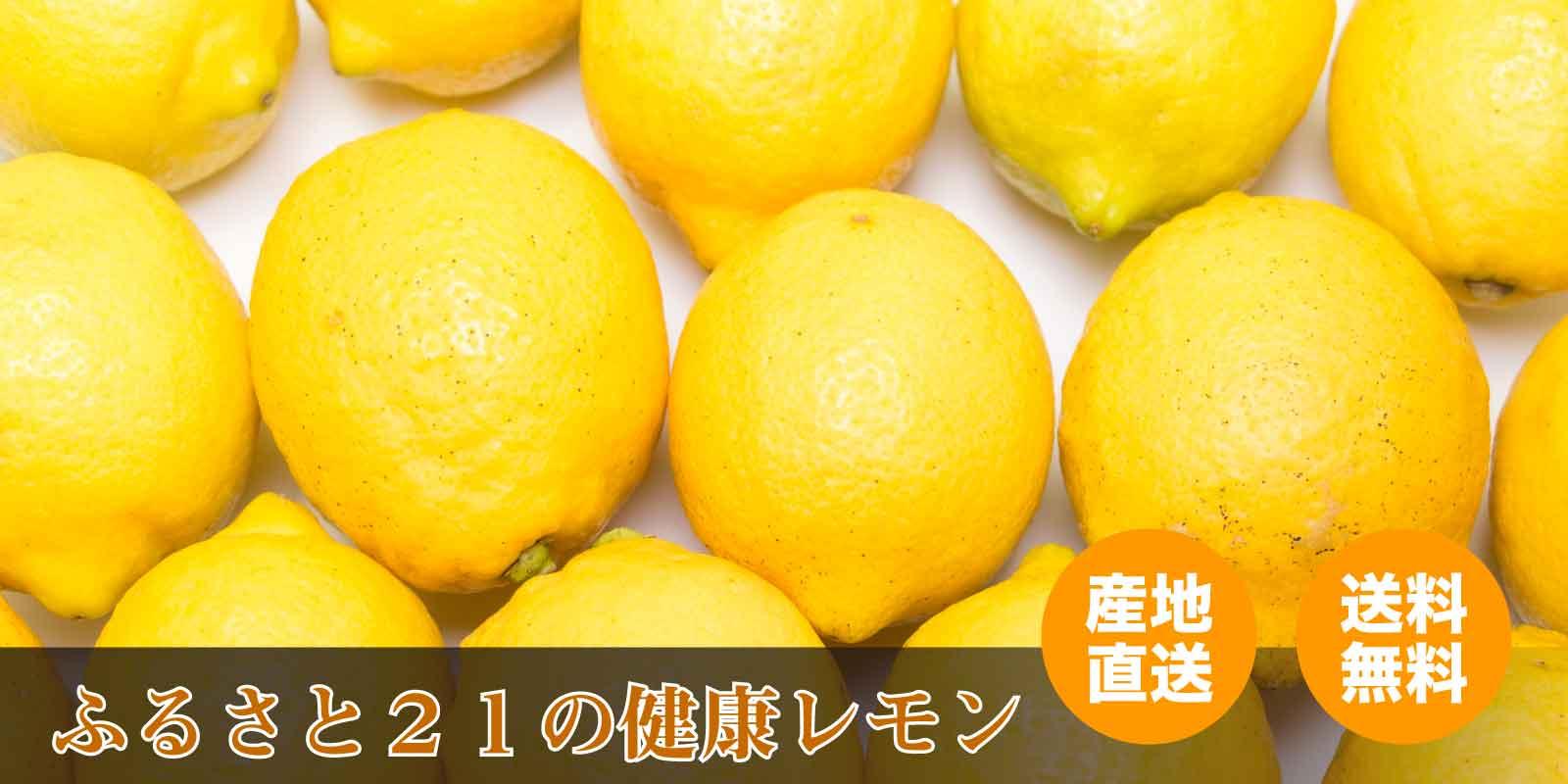 有機JAS・特別栽培の梅