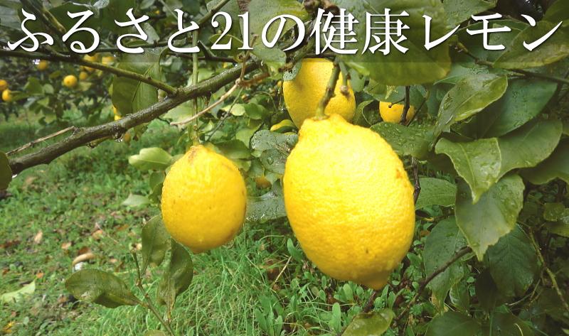 ふるさと21の健康レモン