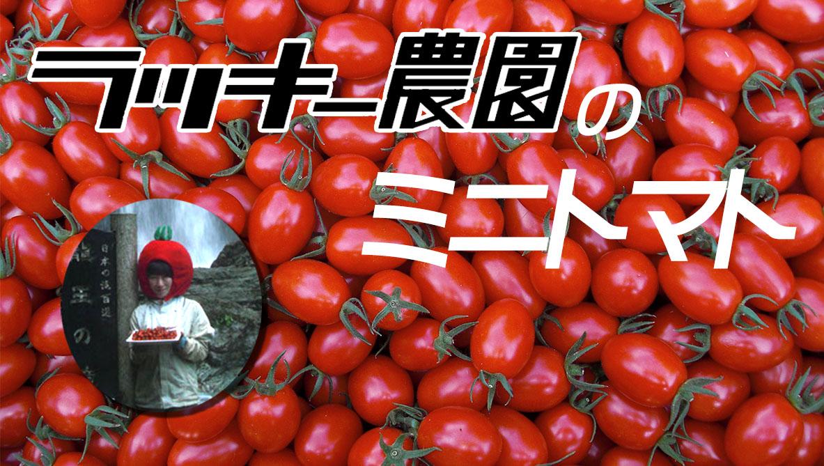 トマトカテゴリトップ画像2