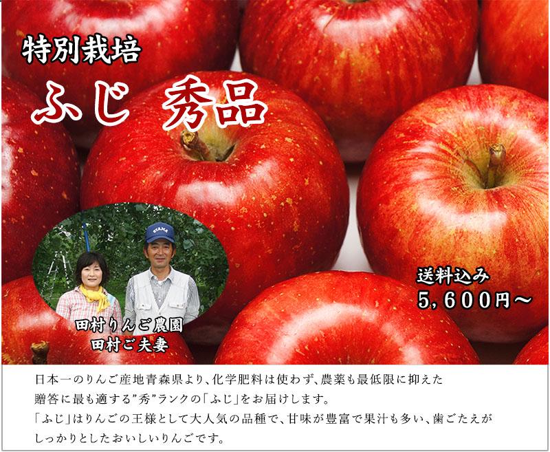 青森県産 ふじ 秀品