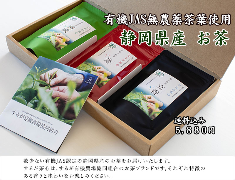 静岡県産 お茶セット